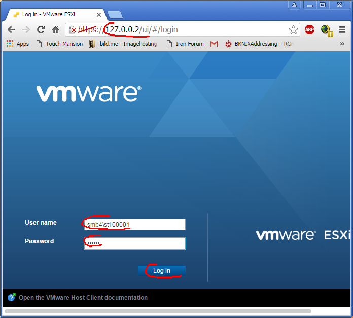 Remote use of VMware vSphere Client